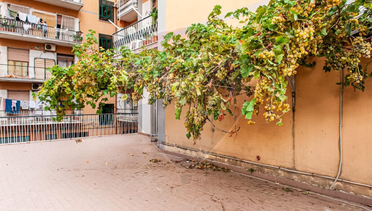 appartamento-vendita-via-san-domenico-002
